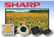 Sharp Manufacturer of ES